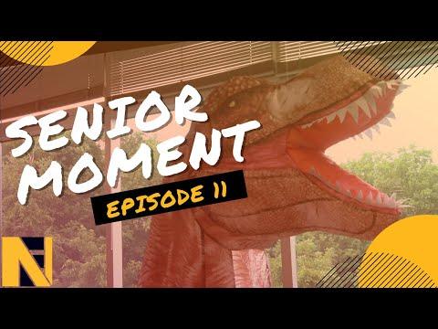 Summer Blockbusters | N&F Senior Moment | Episode 11