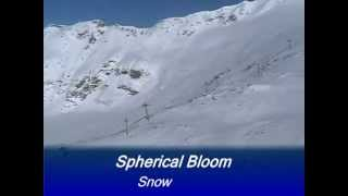 Spherical Bloom - Snow Blind