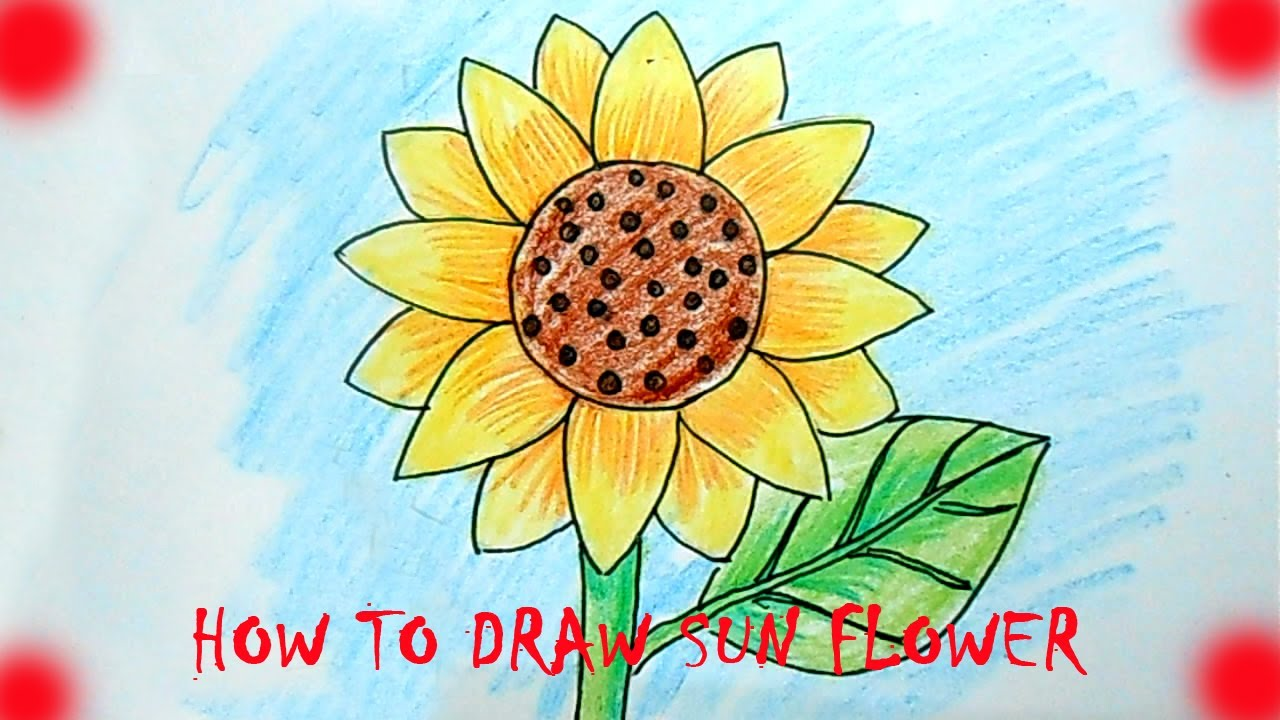 how to draw sun flower [ 1280 x 720 Pixel ]