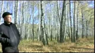 Смотреть клип Сергей Сухачев - Девочка Моя Несмышленая