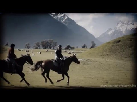 6 Reasons to Never Take a Horse Trek in New Zealand
