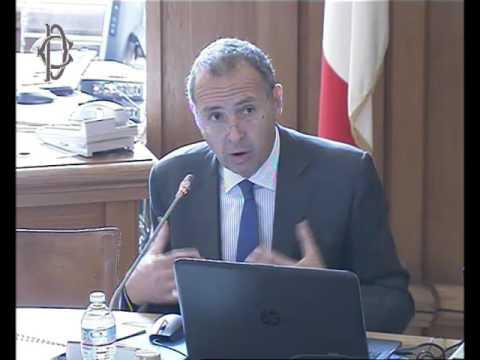 Roma - Energia elettrica, audizione Assoelettrica (11.04.17)