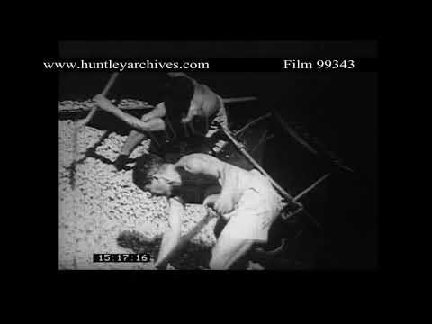 Belem in Brazil, 1950's.  Archive film 99343