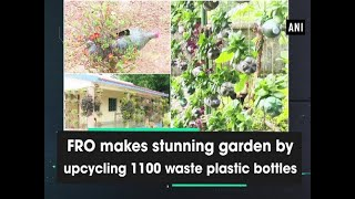 FRO Makes Stunning Garden By Upcycling 1100 Waste Plastic Bottles