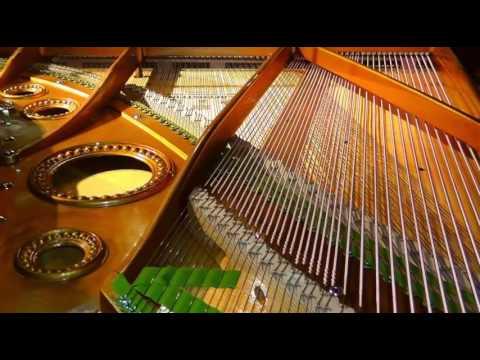 Arturo Toscanini & The Nbc Symphony Orchestra. - Gillis - Symphony #5½, ''A Symphony For Fun''