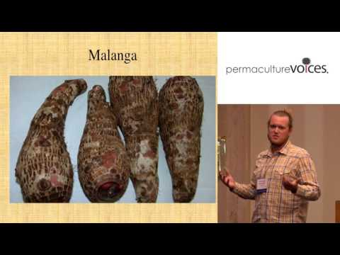 Perennial Vegetables for Profit with Taylor Walker