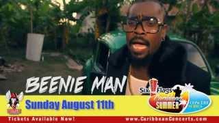 Beenie Man | Mr. Vegas | Bunji Garlin | Christopher Martin and more at Six Flags 2013