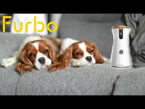 Furbo Smart Dog Camera with Dog Nanny Subscription Service