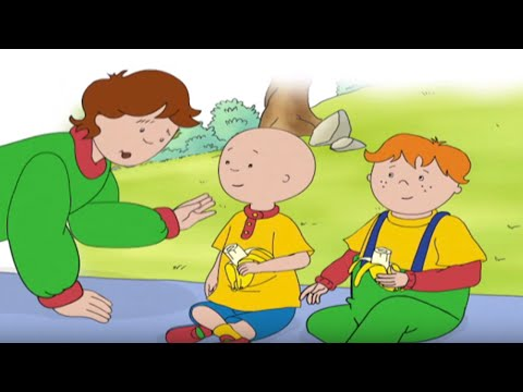 ★☆ Caillou ™ DVD Full Episode | Full Caillou DVD Episodes | Caillou Holiday Movie | Cartoon for Kids
