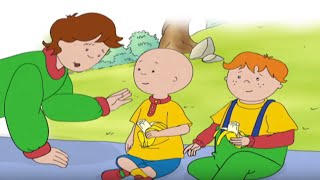 ★☆ Caillou ™ DVD Full Episode | Full Caillou DVD © Episodes | New HD 2016 ✔