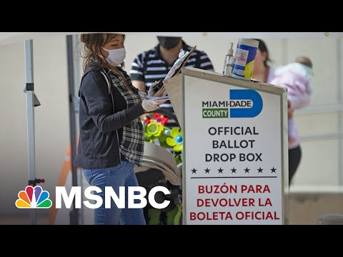 Republicans Fear New Voting Restrictions Could Backfire On Their Own Voters | Rachel Maddow | MSNBC