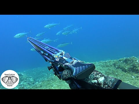 LIKE A BOSS COMPILATION 😲 | Spearfishing The Aegean ✔