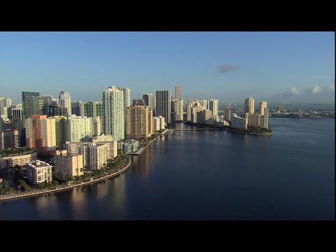 Bouncer's Miami