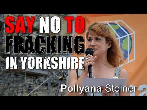 Yorkshire Anti-Fracking Rally: Pollyana Steiner