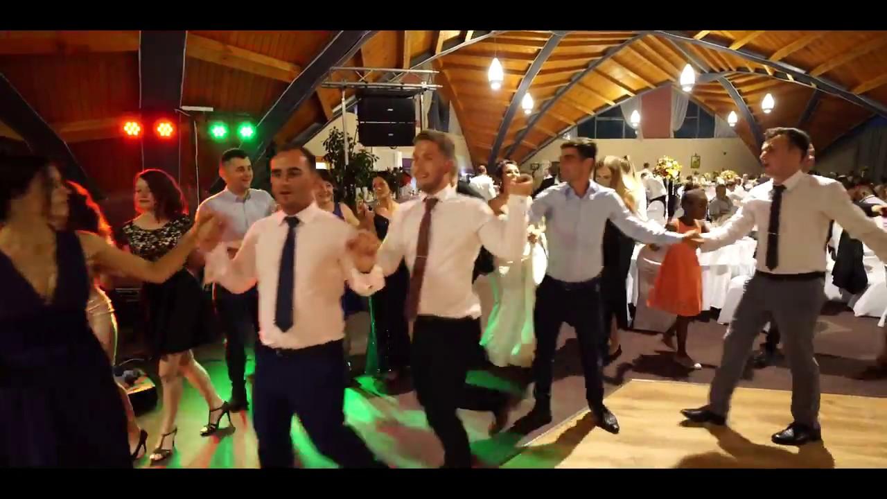 Nunta Baia Mare Cristian Secui Live Show Youtube