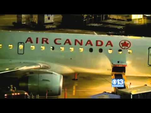 Air Canada loses woman's dog, sends email suggesting it's no big deal