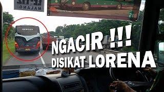 LORENA vs Haryanto Netral kw Ngacir @ Surabaya Toll Road