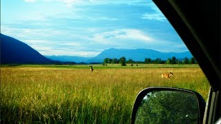 Дорога на машине по США Флорида - Монтана