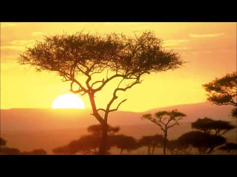 Relax Music - Around The World - Africa - ONE HOUR of stress