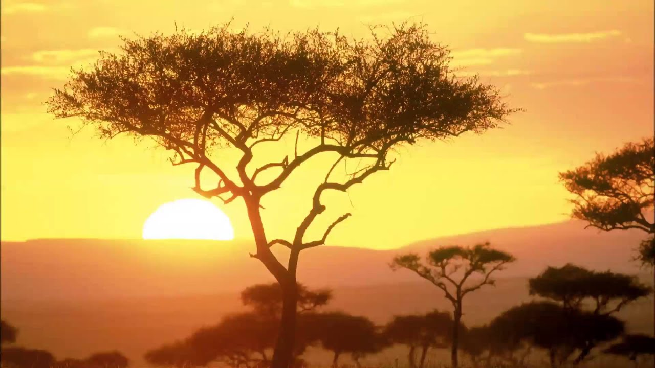 Relax Music - Around The World - Africa - ONE HOUR of stressless african instrumental music