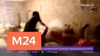 """В соцсетях появляются скандальные видеоролики, которые снимают на """"вписках"""" - Москва 24"""