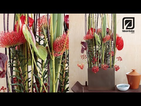 A Modern Autumn Arrangement With Anthurium And Berries Youtube
