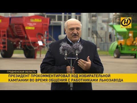 Лукашенко в Кореличах поделился мнением о ходе избирательной кампании в Парламент