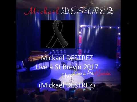 Mickaël DESTREZ - Elva (CD Live à St brévin 2017) - Mickaël DESTREZ