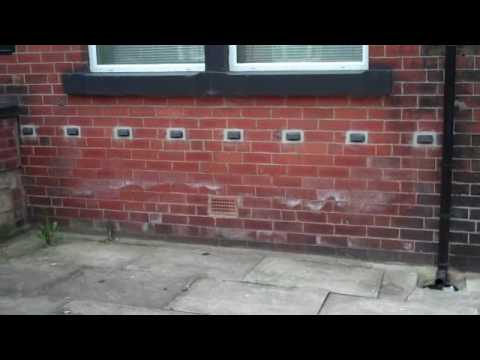 None Chemical Damp Proofing The Green W Youtube