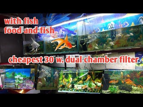 Your New Aquarium Product And Fish Turtle Food And Fish Food