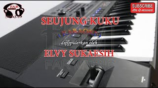 Download lagu SEUJUNG KUKU - ELVY SUKAESIH ( KARAOKE + LYRICS )