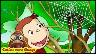 Curioso come George 🐵La Ragnatela Gigante 🐵Cartoni per Bambini 🐵George la Scimmia
