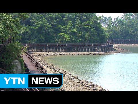 100여 명 사는 섬에서 '여유로운 휴식' / YTN