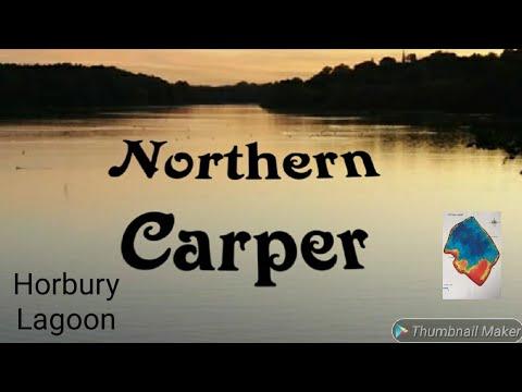Carp Fishing Spring At Horbury Lagoon Yorkshire Carp