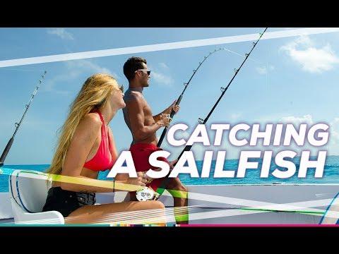 Deep Sea Fishing Cancun: Sailfish, Amberjack And More - AquaWorld