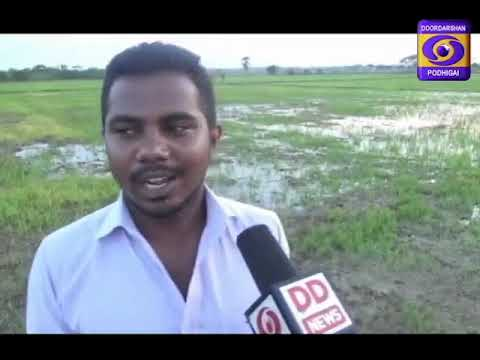 GROUND REPORT- TAMILNADU- PM FASAL BEEMA YOJANA- NAGAPATTINAM- 15-09-2018