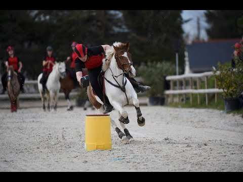 Mounted Games Open Excellence Sessions Corné 2018 Picagames