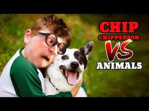 Chip vs Animals (Chippy's Mittens, Mr Scraps, Oscar The Octopus, Lyle The Turkey, etc.)