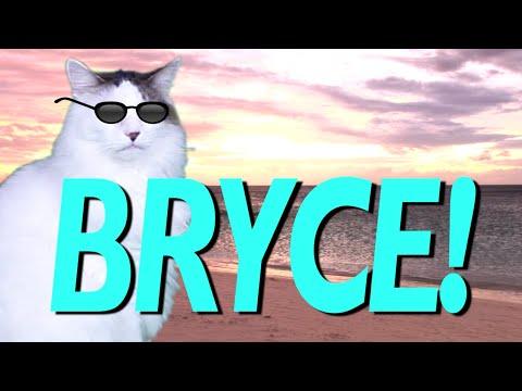 hqdefault happy birthday bryce! epic cat happy birthday song youtube
