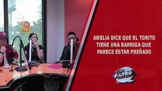 Amelia dice que El Torito tiene un barrigón que parece estar preñado!!!