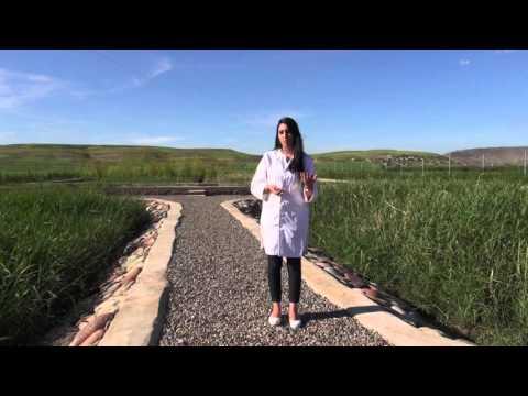Saison 3 - Tidili-Mesfioua, pour un traitement écologique et participatif des eaux