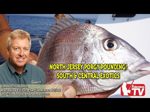 July 23, 2020 New Jersey/Delaware Bay Fishing Report With Jim Hutchinson, Jr.