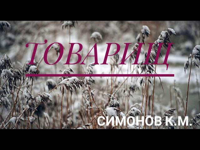 Изображение предпросмотра прочтения – АктанКаткелдиев читает произведение «Товарищ» К.М.Симонова
