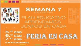Semana 7, Básica Media (5to, 6to y 7mo EGB), Feria en casa