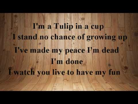 Fiona Apple - Valentine (Karaoke)