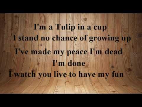 Fiona Apple   Valentine (Karaoke)