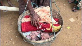 Rohingya refugees: Newborn twins seek safety in Bangladesh