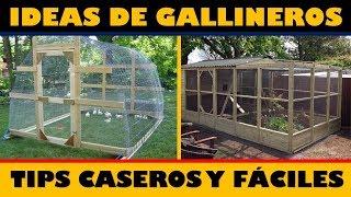 Las Mejores Ideas para hacer Gallineros + Tips Caseros