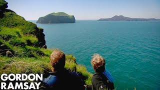 Hunting Puffins On The Edge Of A Cliff In Iceland - Gordon Ramsay