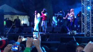 Rasta Love / Champion - Ky mani Marley ft. Protoje - Jamming 2015